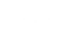 Toyota Visual Statements